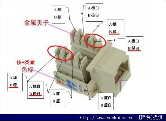 网线插座接法[多图]