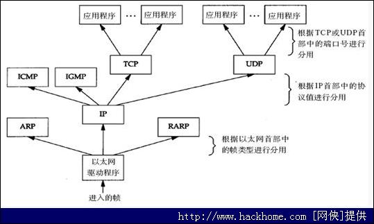 """假设是ip数据报,ip协议再依据ip首部中的""""顶层协议"""""""