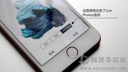 iPhone6s/Plus自制live photo动态锁屏壁纸导入教程(无需越狱)[多图]图片1