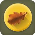 果果壁纸app