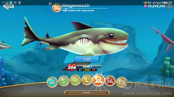饥饿的鲨鱼世界鲨鱼图鉴大全[多图]