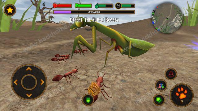 模拟火蚁官方IOS版(Fire Ant Simulator)图5: