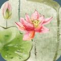 娇荷欲语梦象动态壁纸手机版APP v1.2.7