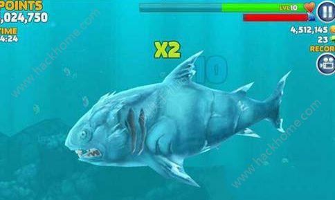 饥饿鲨进化冰鲨怎么样 冰鲨使用技巧