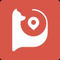 盯盯拍行车记录仪app下载手机版 v6.0.3.0603