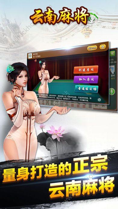 云南未来飞小鸡麻将官方网站图2: