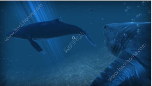 VR狂鲨官方游戏手机版图1: