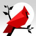动物拼图无限金币内购破解版(Cardinal Land) v1.3.1