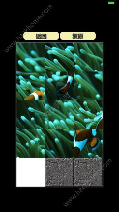 海洋动物拼图游戏ios版图1: