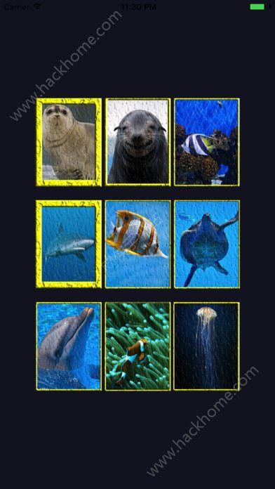 海洋动物拼图游戏ios版图3: