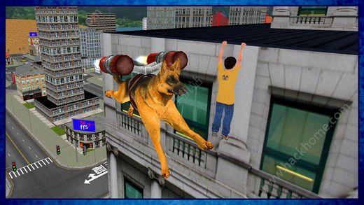 飞行狗模拟器游戏手机版下载图4: