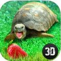 龟模拟器游戏下载官方手机版 v1.0