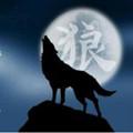 天狼直播二维码