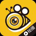 蜂蜜live直播app官方下载安装地址 v1.0