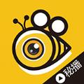 蜜蜂live直播app