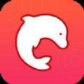 海豚动态壁纸手机软件app下载 v1.1