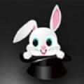 黑兔盒子直播