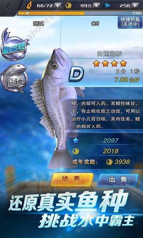 啪啪钓鱼游戏官方安卓版图1: