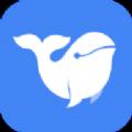 小白鲸官方版app下载 v1.0.0