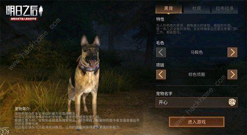 明日之后狗可以换吗 选错了可以换狗吗[多图]图片2_嗨客手机站