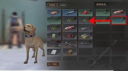 明日之后宠物背包怎么获得 宠物背包获得方法介绍[多图]图片3_嗨客手机站