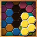 六角木块拼图安卓游戏下载(Wood Block Puzzle Hexa) v1.0.4