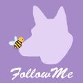 FollowMe法洛蜜app