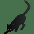 夜猫小盒直播官方app手机版下载 v1.0