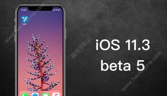 苹果ios11.3beta5固件下载地址 ios11.3 beta5描述文件地址[多图]图片1_嗨客手机站