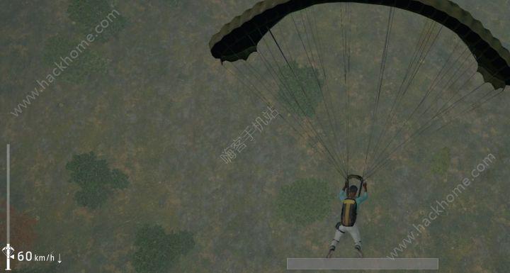跳伞模拟器无限金币内购破解版图1: