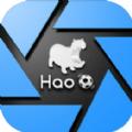 Hao球助手ios官方版软件下载 v2.2