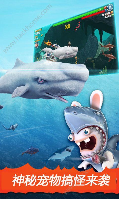 饥饿鲨进化无敌版官方下载图2: