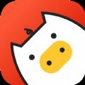 小猪资讯官方手机版app下载 v1.0