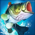超真实钓鱼模拟无限金币内购破解版V1.5