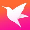 迅雷直播ios苹果app手机版 v1.0