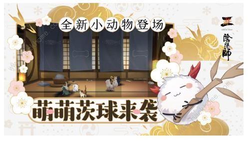 阴阳师9月19日更新公告一览 全新小动物茨球来袭[多图]图片1_嗨客手机站