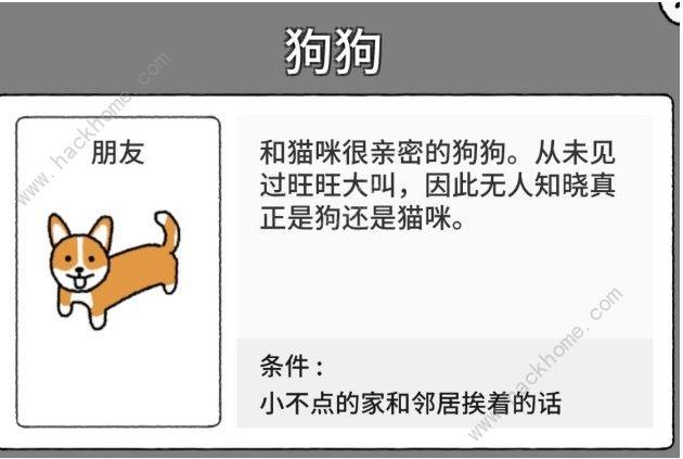 猫咪真的超可爱朋友大全 小动物出现条件汇总[多图]图片1