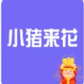 小猪来花贷款app官方版下载 v1.0.0