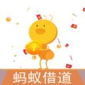 蚂蚁借道贷款官方入口app下载 v1.0.0