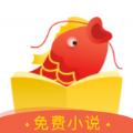 锦鲤追书app软件手机版下载 v0.1.0