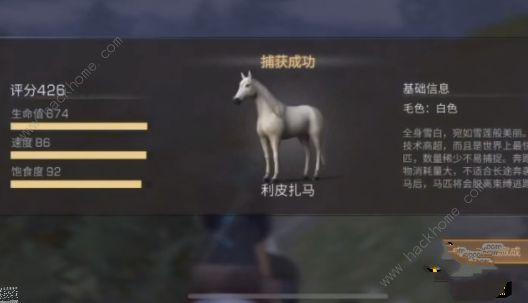 明日之后红杉镇骑马攻略 红杉镇怎么驯马[视频][多图]图片3