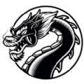 黑龙小说app