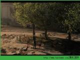 幻影沙尘 E3 2014高清CG预告片