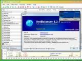 上网流量监控软件(NetBalancer)官方免费版  v8.2.1特别版