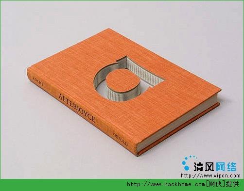 超另类的异形书籍装帧设计作品欣赏[多图]